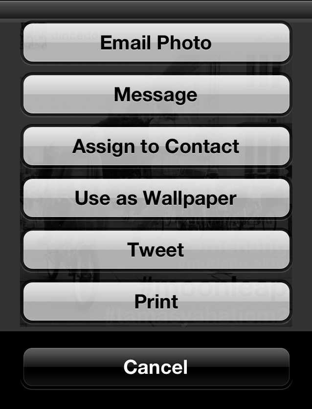 Sharing Menu in IOS 5