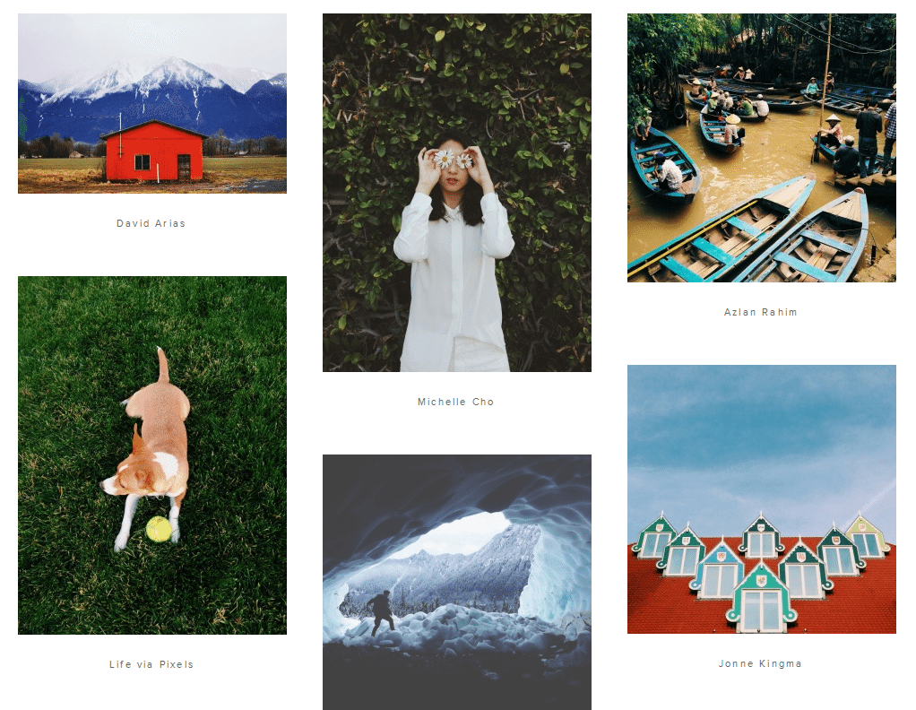 VSCO Grid on the Web
