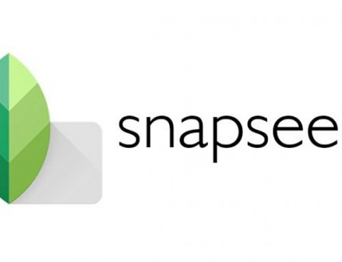 Snapseed App Review for Photographers